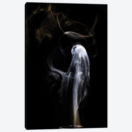 Ghost In Smoke Canvas Print #NRV388} by Nik Rave Canvas Art Print