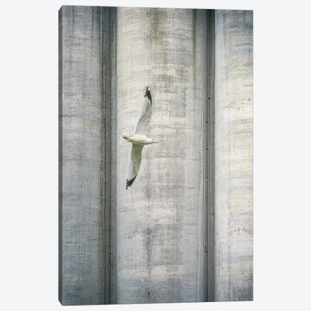 A Flight Over Concrete Jungle Canvas Print #NRV432} by Nik Rave Art Print