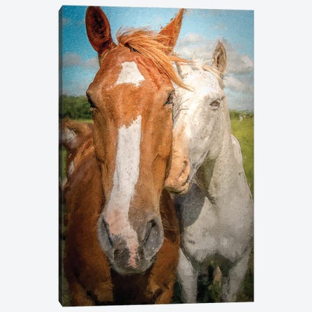 A True Love (Horses) Canvas Print #NRV441} by Nik Rave Canvas Artwork