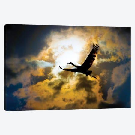 Flight Of Freedom Canvas Print #NRV460} by Nik Rave Canvas Wall Art