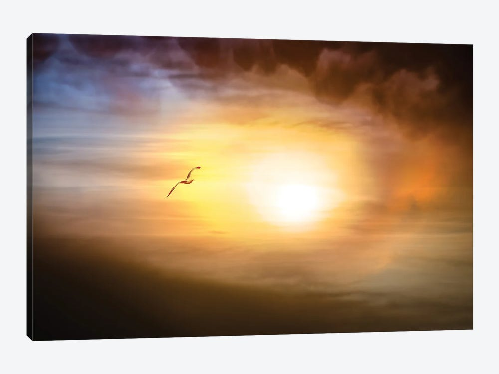 The Eye Of A Storm by Nik Rave 1-piece Canvas Artwork