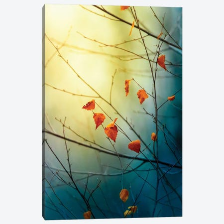 The Last Signs Of Fall Vertical Canvas Print #NRV491} by Nik Rave Canvas Print