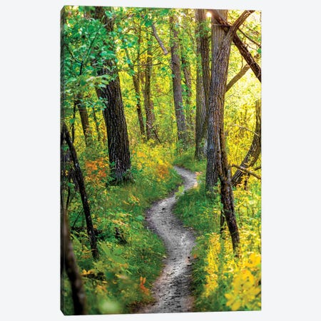 Waking Up Of Nature Canvas Print #NRV499} by Nik Rave Art Print