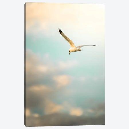 Hunting Seagull Up Down Canvas Print #NRV61} by Nik Rave Canvas Artwork