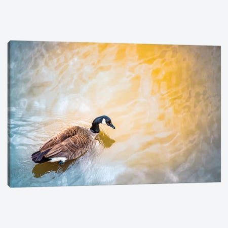 Gold River Goose Canvas Print #NRV72} by Nik Rave Art Print