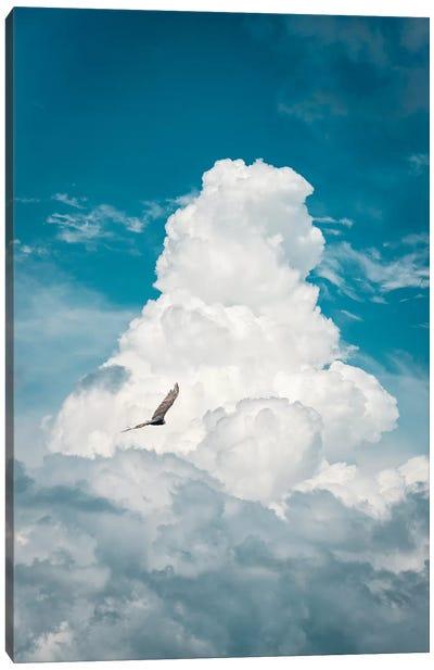 Through The Clouds Vulture Canvas Art Print