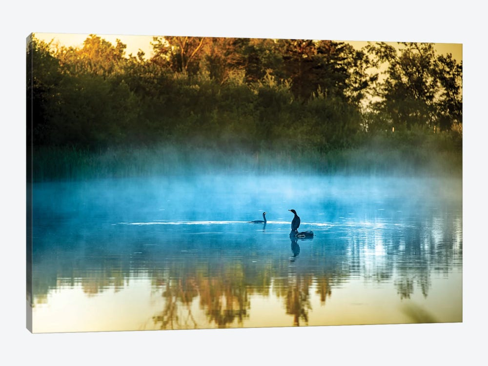 The Foggy Songs by Nik Rave 1-piece Canvas Wall Art