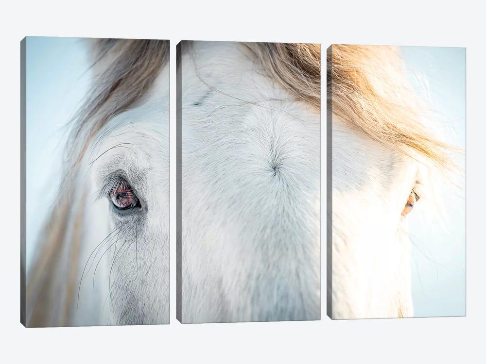 White Horse Eyes by Nik Rave 3-piece Canvas Art Print