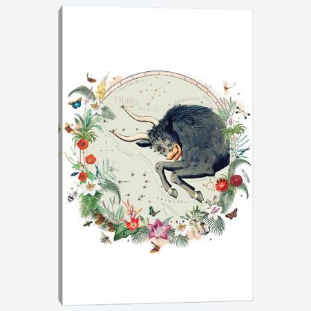 Taurus Horoscope Canvas Print #NRY145} by Natalie Ryan Canvas Wall Art