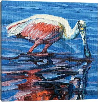 Spooner Canvas Art Print