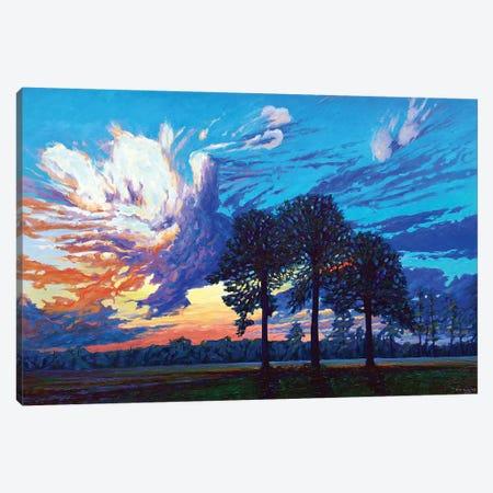 The Three Graces Canvas Print #NSM27} by Mark Nesmith Canvas Print