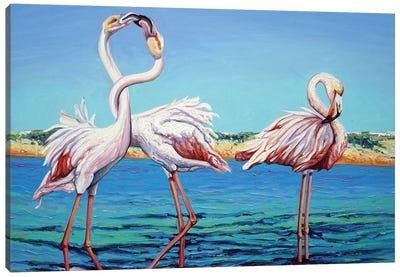 Two's Company Canvas Art Print