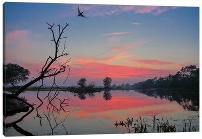 Magical Sunset Canvas Art Print