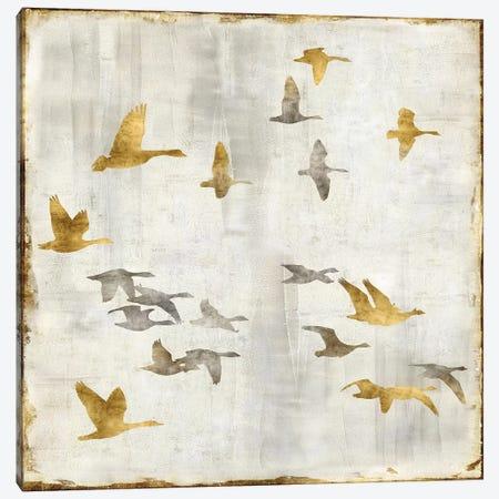 Golden Flight I Canvas Print #NSP1} by Nick Spencer Canvas Art