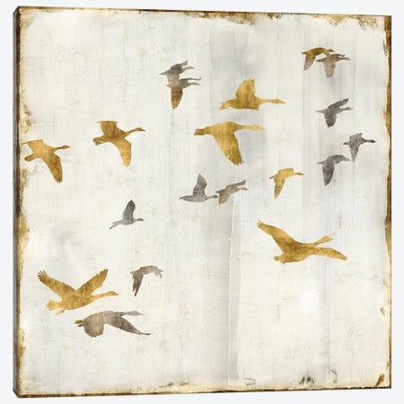 Golden Flight II Canvas Print #NSP2} by Nick Spencer Canvas Artwork
