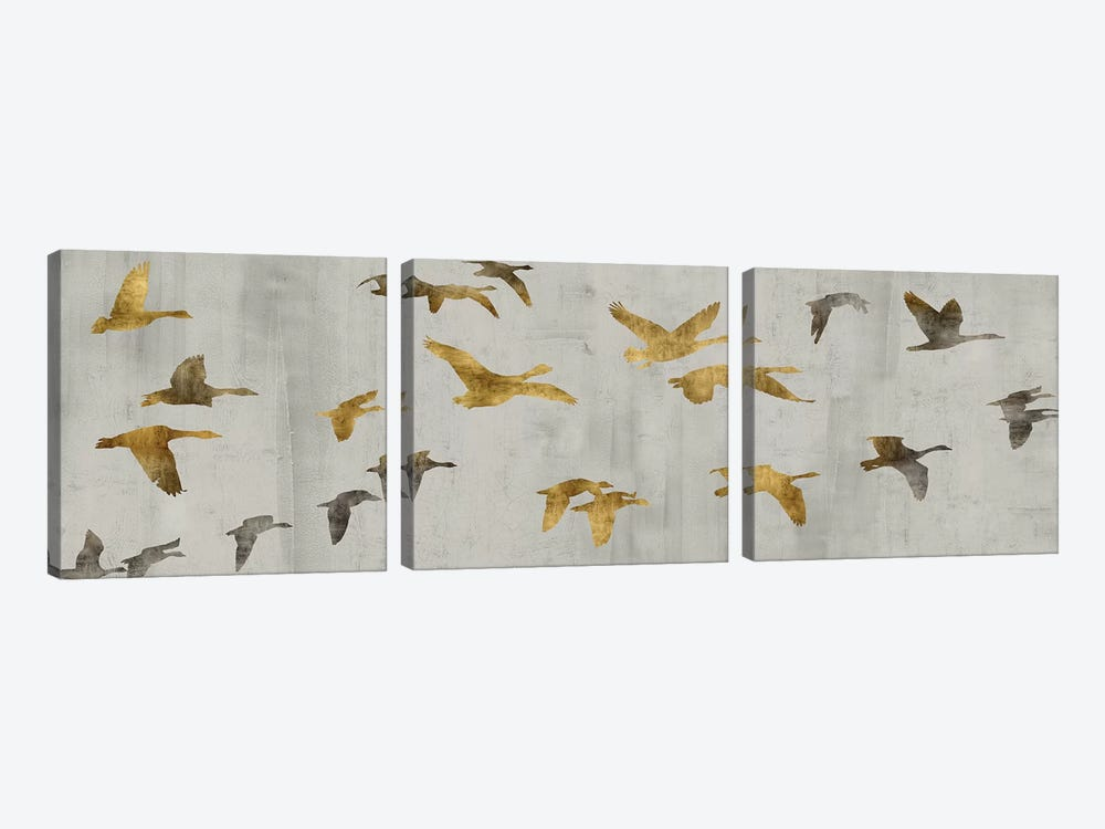 In Flight by Nick Spencer 3-piece Canvas Wall Art