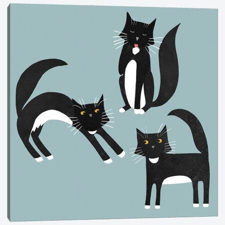 Black And White Cats Canvas Print #NSQ100} by Nic Squirrell Canvas Wall Art