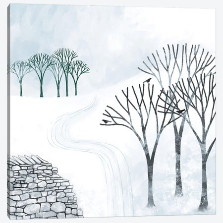 More Snow To Come Canvas Print #NSQ110} by Nic Squirrell Art Print