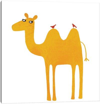 Camel Canvas Art Print
