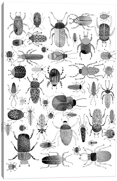 Ink Beetles Canvas Art Print