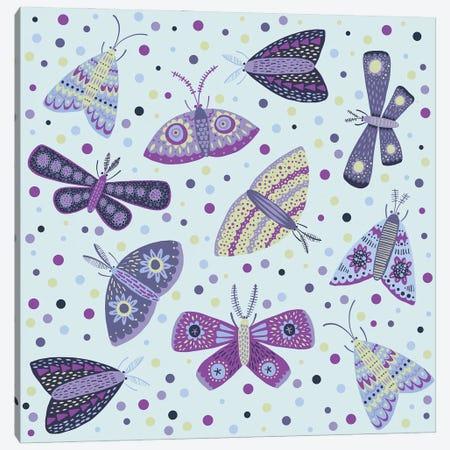 Moths Canvas Print #NSQ183} by Nic Squirrell Canvas Wall Art