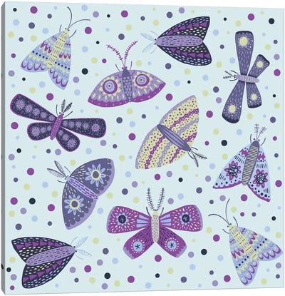 Moths Canvas Art Print