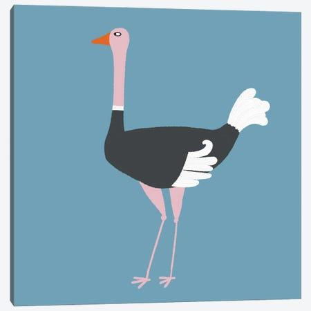 Ostrich Canvas Print #NSQ200} by Nic Squirrell Art Print