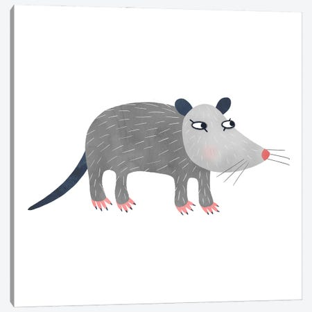 Possum Canvas Print #NSQ219} by Nic Squirrell Canvas Art