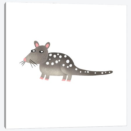 Quoll Canvas Print #NSQ221} by Nic Squirrell Canvas Print