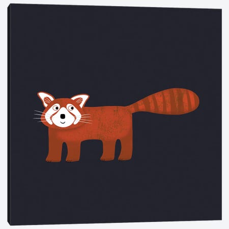 Red Panda In The Dark Canvas Print #NSQ226} by Nic Squirrell Canvas Wall Art