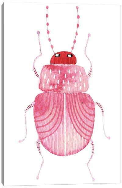 Sarcastic Beetle Canvas Art Print