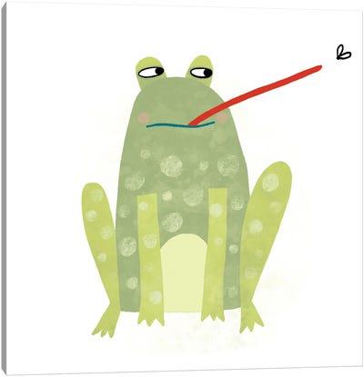 Frog Canvas Art Print