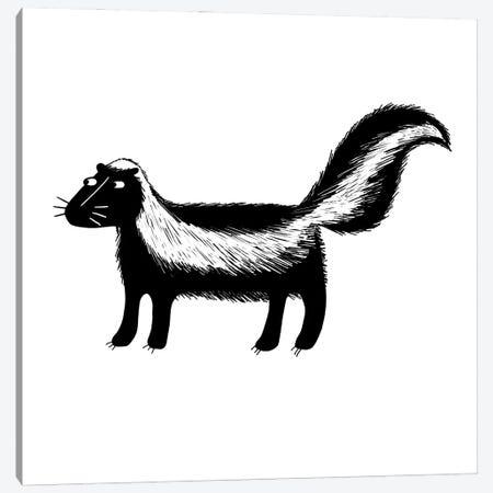 Skunk Canvas Print #NSQ241} by Nic Squirrell Art Print