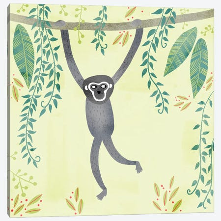 Gibbon Canvas Print #NSQ25} by Nic Squirrell Art Print