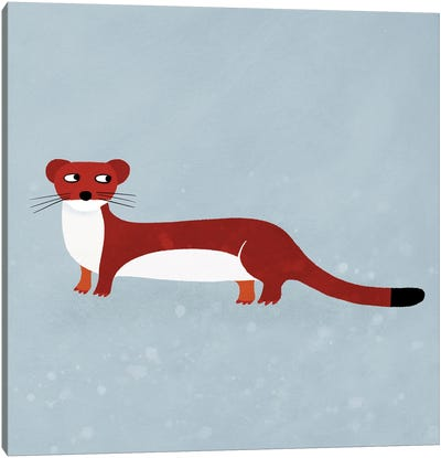 Weasel Canvas Art Print