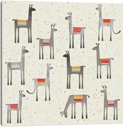 Llamas In A Meadow Canvas Art Print