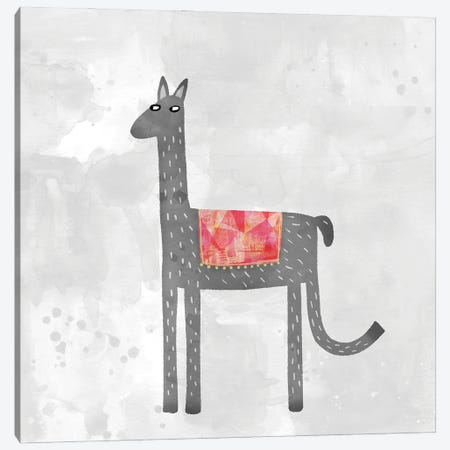 Llama With A Fancy Blanket Canvas Print #NSQ46} by Nic Squirrell Canvas Print