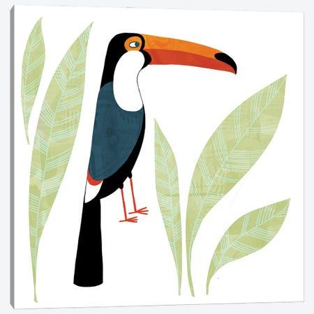 Toucan Canvas Print #NSQ72} by Nic Squirrell Canvas Art Print