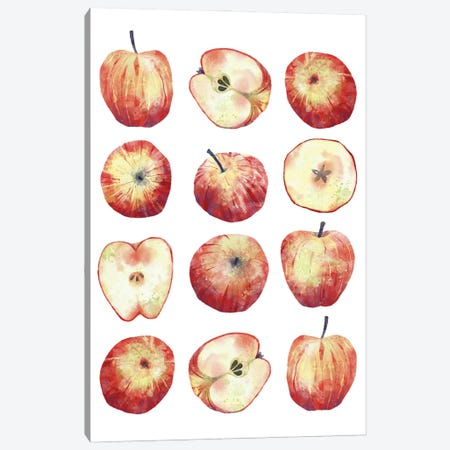 Apples Canvas Print #NSQ78} by Nic Squirrell Art Print