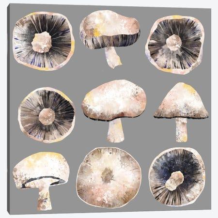 Mushrooms Canvas Print #NSQ80} by Nic Squirrell Canvas Art