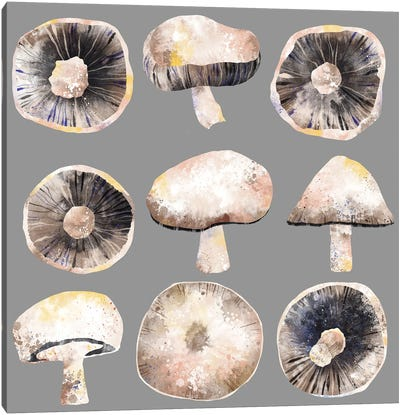 Mushrooms Canvas Art Print