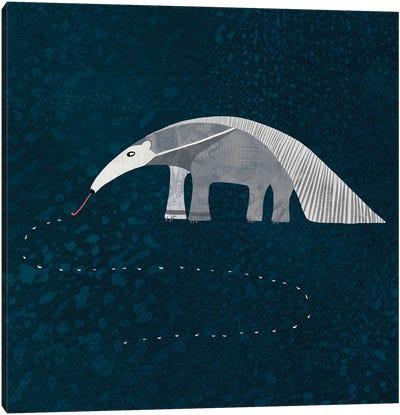Giant Anteater Canvas Art Print