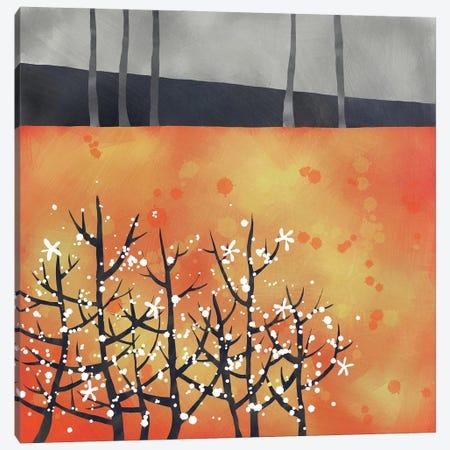 Blackthorn Canvas Print #NSQ98} by Nic Squirrell Canvas Print