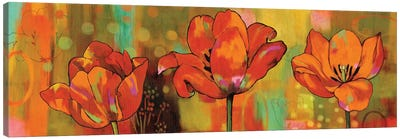 Magical Tulips Canvas Art Print