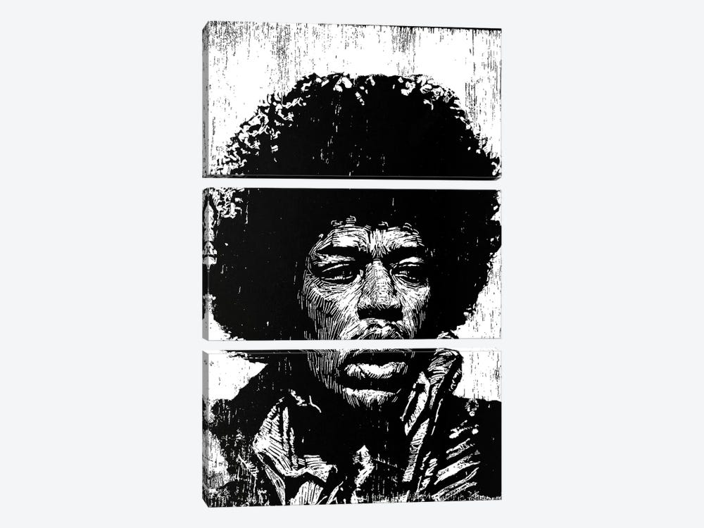 Hendrix by Neil Shigley 3-piece Canvas Art Print