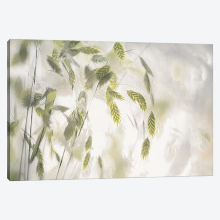 Grass Blades 3-Piece Canvas #NTA4} by Nel Talen Canvas Artwork