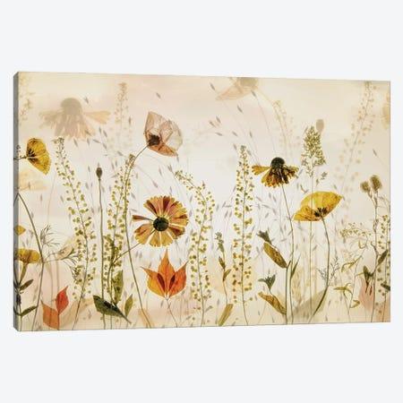 In The Field... Canvas Print #NTA5} by Nel Talen Canvas Wall Art