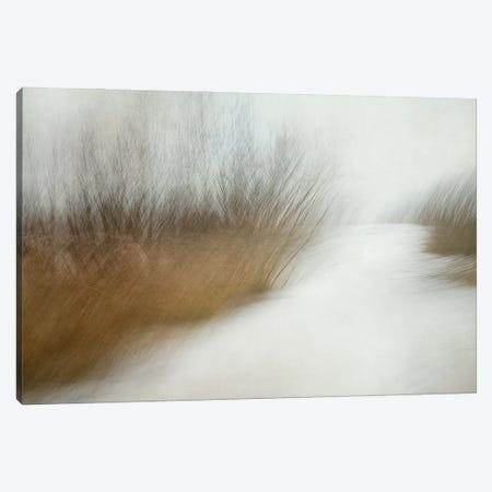 Wintertime Canvas Print #NTA8} by Nel Talen Art Print