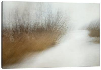 Wintertime Canvas Art Print