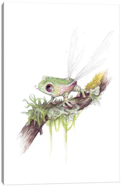 Frogonfly Canvas Art Print